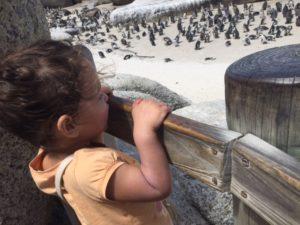 hotspots Kaapstad met kids