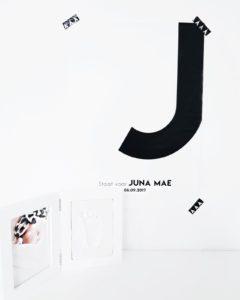 kamer Juna