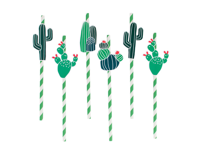 Rietjes Cactus | decoratie voor kinderverjaardag bij Confetti Time